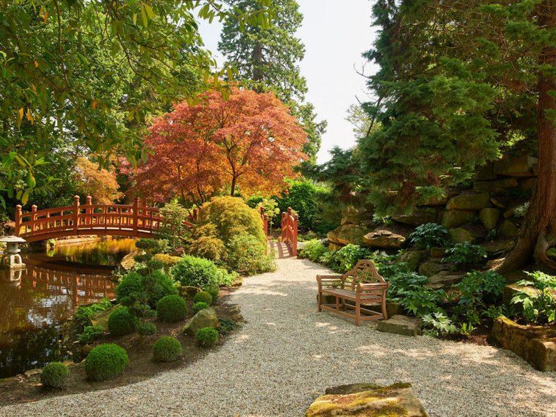 Grantley Hall Japanese Garden